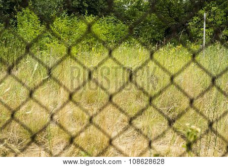 Rusty Metal Grille Fence Macro And Nature Defocused Background