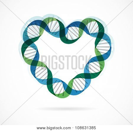 DNA, genetic icon - heart