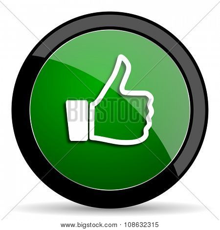like green web glossy circle icon on white background