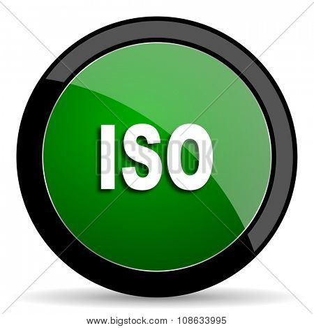 iso green web glossy circle icon on white background