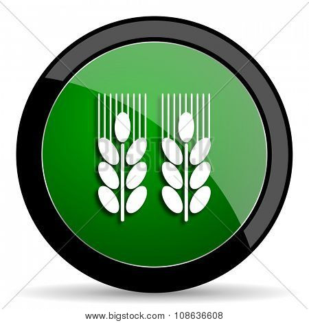 agricultural green web glossy circle icon on white background