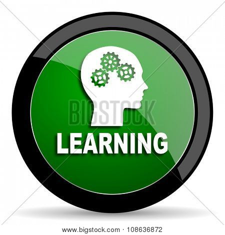 learning green web glossy circle icon on white background