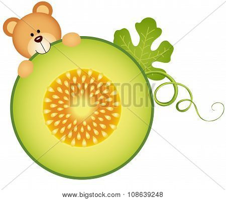 Teddy bear eating cantaloupe melon slice