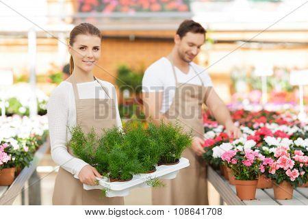 Positive florists working together