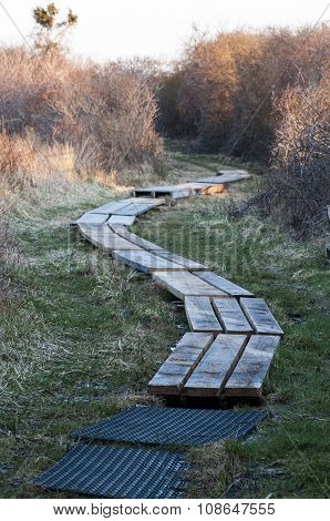 Functional Boardwalk