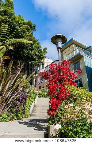Residential Area Of Downtown San Francisco