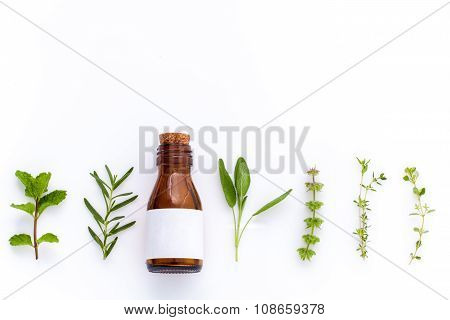 Bottle Of Essential Oil With Herb Holy Basil Leaf, Rosemary,oregano, Sage,basil And Mint On White Ba