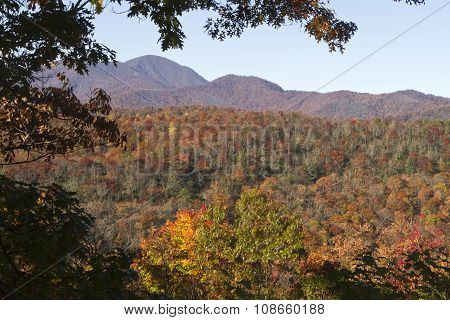 Autumn Appalachian Mountains Palette Of Colors