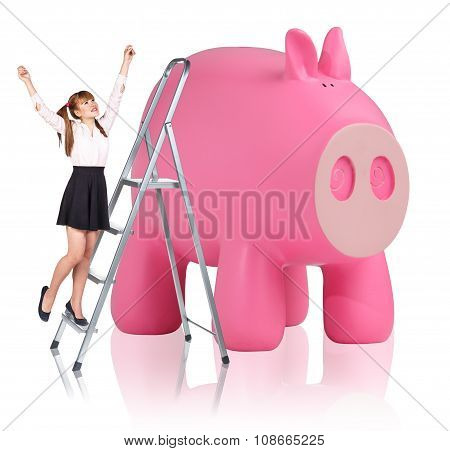Woman rises up on the stepladder near piggy bank