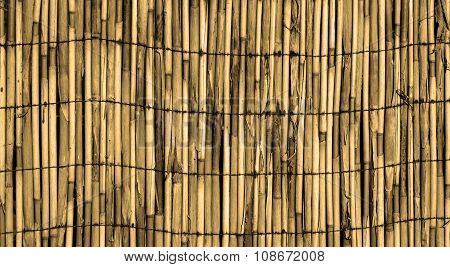 Texture Of Old Yellow Wall Of Bound Bamboo