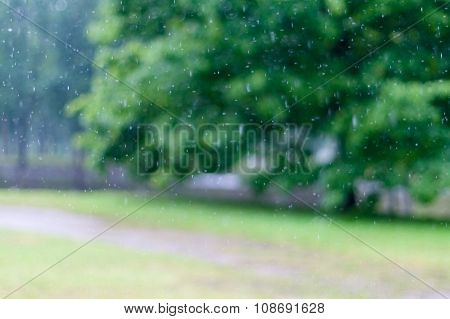 Abstract Blurred Rain With Greenery On Background