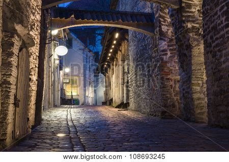 Katariina Kaik (st. Catherine's Passage) - Half-hidden Walkway In Old Town Of Tallinn, Estonia