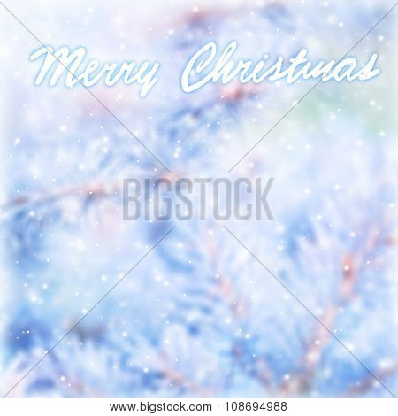 Merry Christmas greeting card background, beautiful blur abstract background with text space, coniferous tree branch covered with hoar frost, selective focus on the text