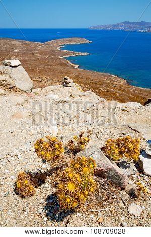 Sea In Delos   Old Ruin Site