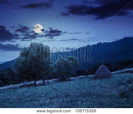 Haystack Near Trees On Hillside Meadow  In Mountains At Night