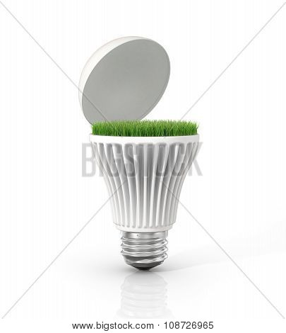 Green Energy. Open Led Light Bulb With Green Grass Inside On The White Background.