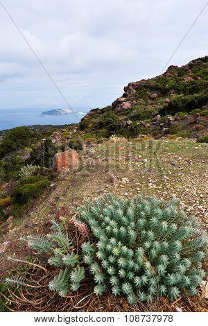 Autumn Landscape of Nisyros, Greek Island