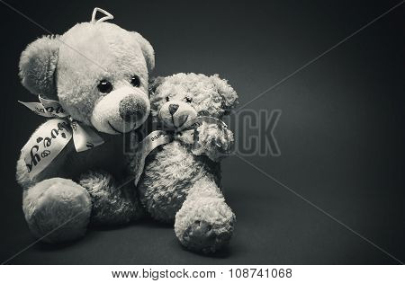 Two Little Plush Bears