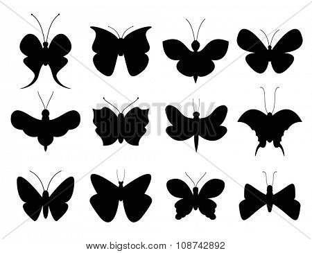Butterflies black and white flat style vector collection. Vector butterfly set. Butterfly colorful different types. Butterfly silhouette isolated on white background. Butterfly black and white
