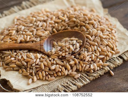 Whole Unpolished Spelt In A With A Spoon
