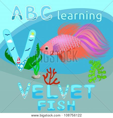 V Is For Velvet Fish Sea background ABC background Sea animal cartoon alphabet V letter ABC kids Bea