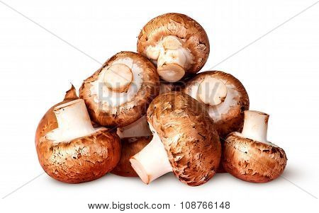 Pile Of Fresh Brown Champignon