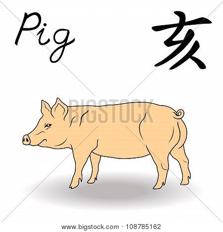 Eastern Zodiac Sign Pig