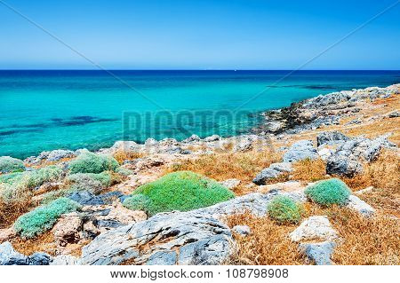 Beautiful Beach With Turquoise Water