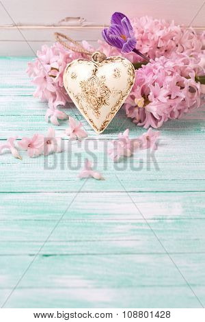 Background  With Fresh Flowers Hyacynths, Crocus  And Decorative Heart On Turquiose Painted Wooden P