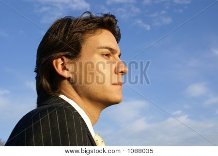 Business Man In Pinstripe Suit