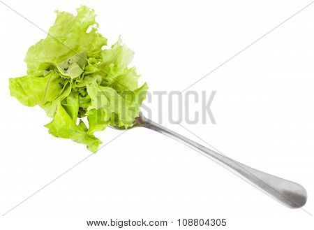 Dinning Fork With Fresh Green Lettuce Isolated