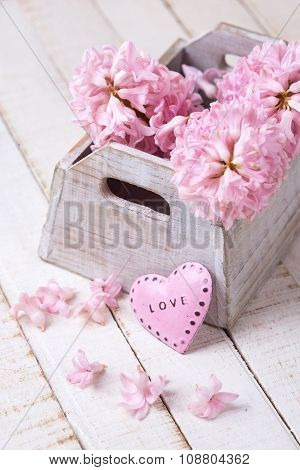 Fresh Pink Flowers Hyacinths In Box And Decorative Heart