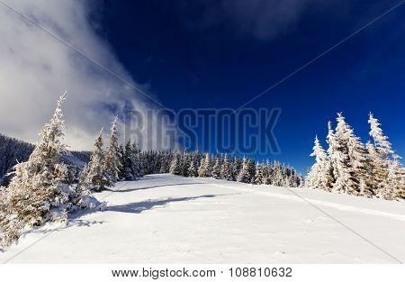 Beautiful winter landscape with snow covered trees. Dramatic wintry scene. Location Carpathian, Ukraine, Europe. Beauty world.