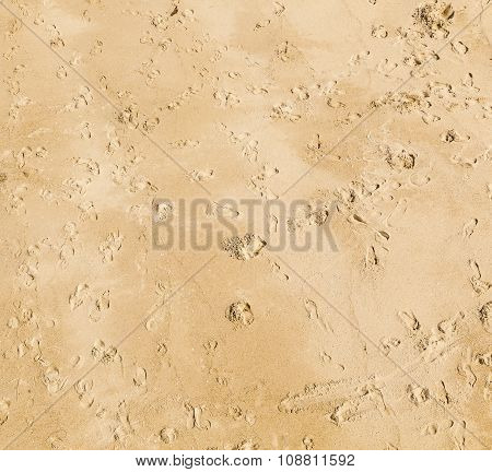 Footprints Of People In The Fine Sand Of The Beach