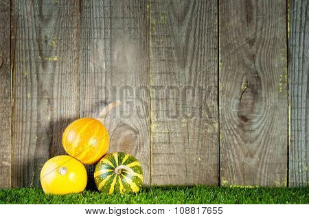Small Decorative Striped Pumpkins Near Wooden Boards.