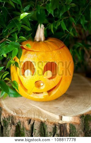 Halloween Pumpkin On A Wooden Stump.