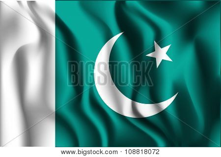 Flag Of Pakistan. Rectangular Shape Icon