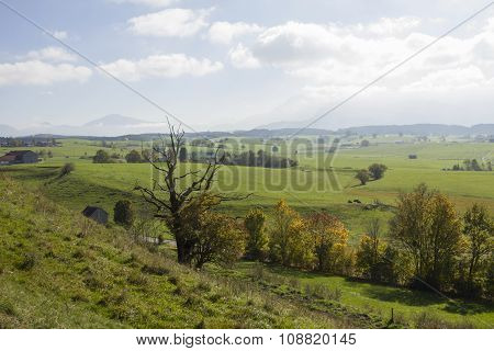 Idyllic Rural Landscapein The Morning Light