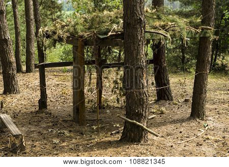 Wooden Arbor With Camouflage In The Pine Forest