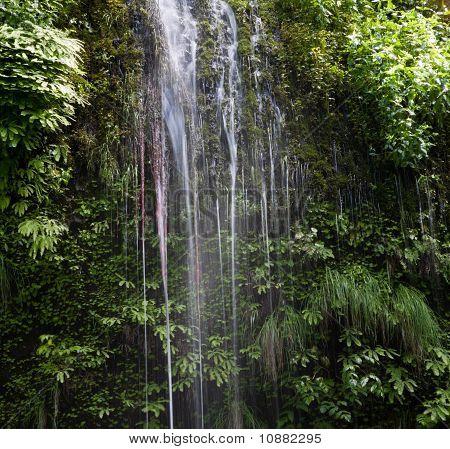 Wasserfälle von Pflanze bedeckt Felswand