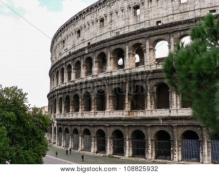 Building Coliseum (colosseum) In Rome (italy) And Trees In Autumn