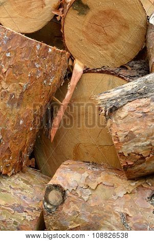 Heap Of Sawn Pine Logs Closeup