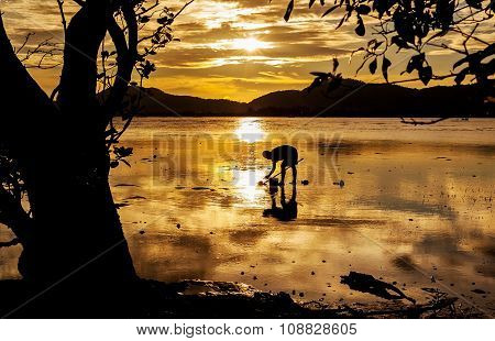 Silhouette Fisherman In Frame From Nature With Sunset