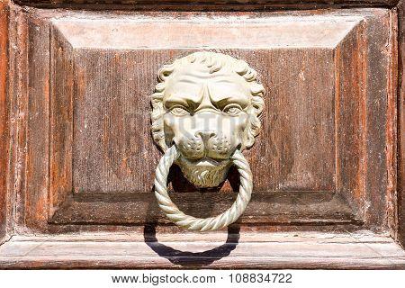 Lion's head on an wooden door