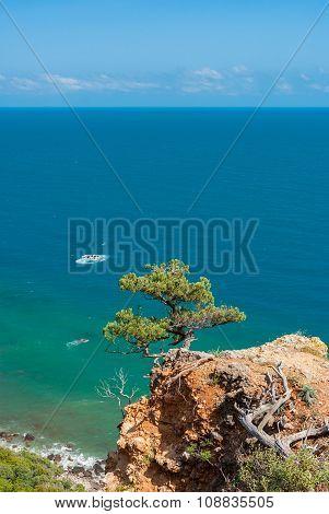 Beautiful Crimean landscape in Cape Martyan reserve