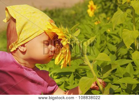 Sniffing A Sunflower