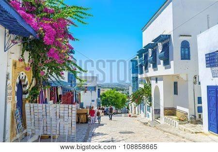 The Hills Of Sidi Bou Said