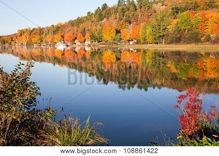 Fall Colors Reflected In Calm Lake With Foreground Bushes