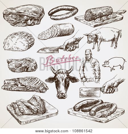 Meat, butcher. Hand drawn vector illustration