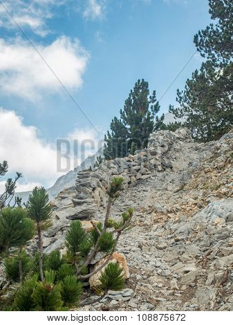 ascending mountain trail path road to success concept